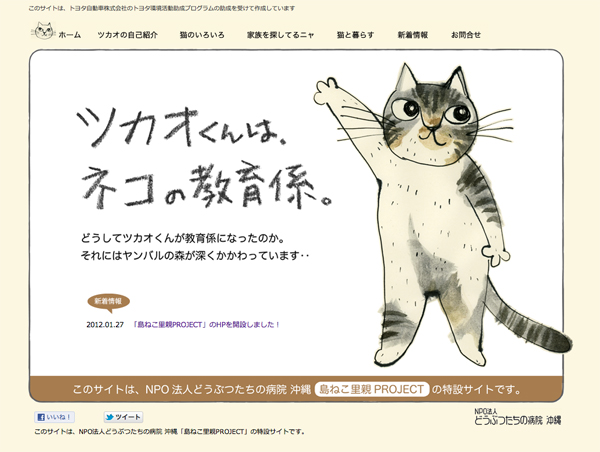 catssaite.jpg