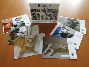 島ねこカレンダー2015.JPG