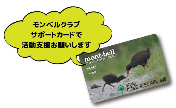サポートカード宣伝_HP.png